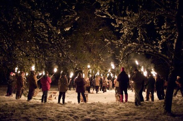 Tradition contemporaine du wassail, en Angleterre